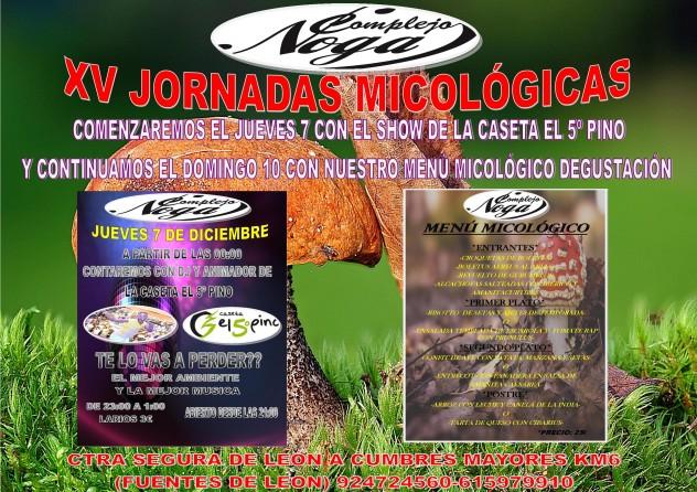 CARTEL JORNADAS MICOLOGICAS